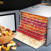 máy sấy hoa quả inox 10 khay